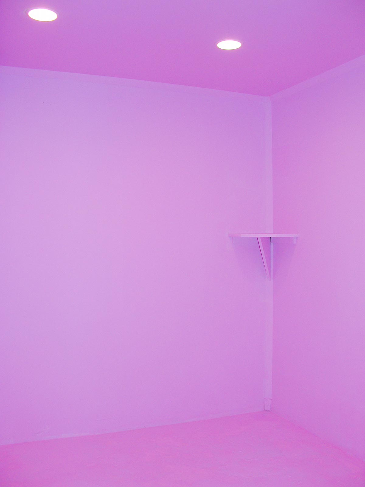 Chun Hua Catherine Dong paints Access Gallery to pink and invites viewers to paint the gallery back to white in Vancouver