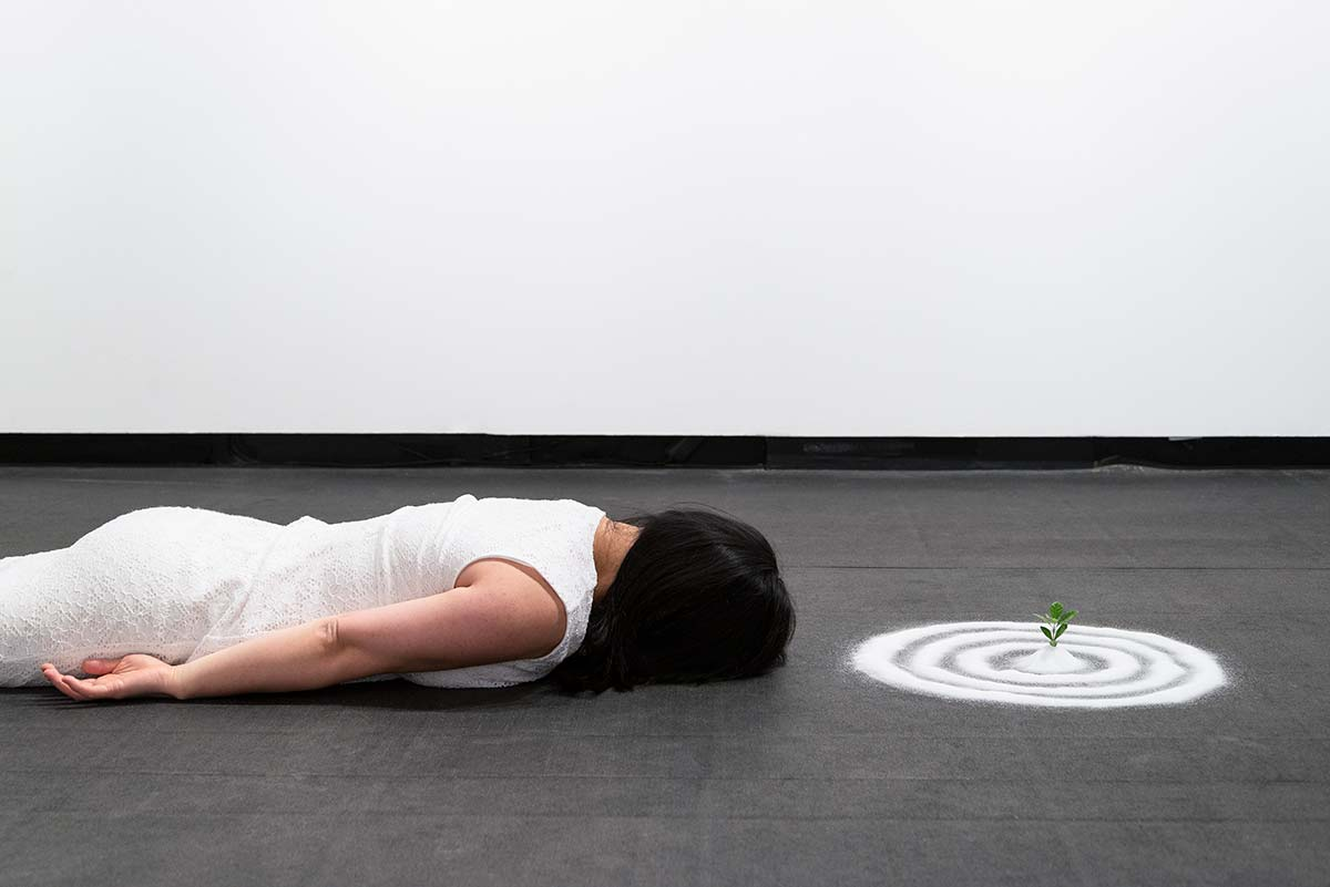 Chun Hua Catherine Dong used salt to build circles around a Gardenia twig, laying on the floor and keep still for three hours.