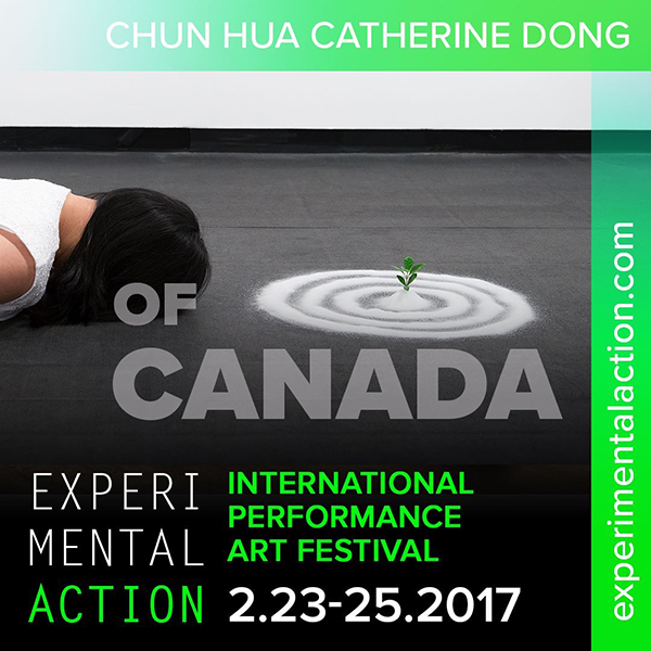 Chun Hua Catherine Dong's performance news in Houston USA